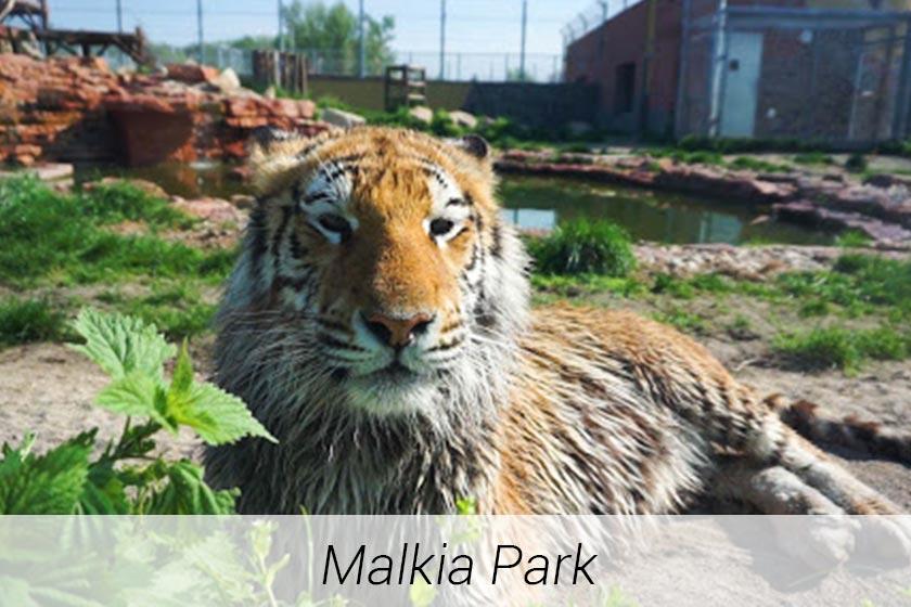 05-malkia-park